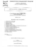 CM du 23 mai 2020 ODJ